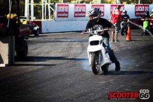 Spitro BCD RX